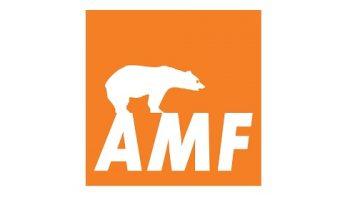 AMF - Forro Acústico Mineral